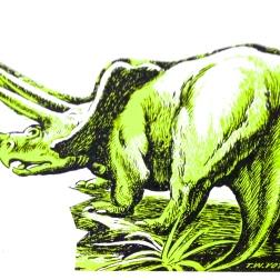 triceratops magnet